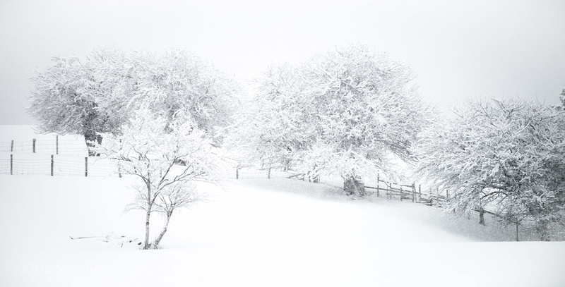 Ethereal White